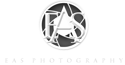 large 3D logo web2